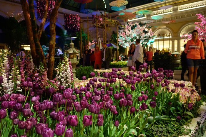 The many, many flowers in the Bellagio lobby turned out to be real!
